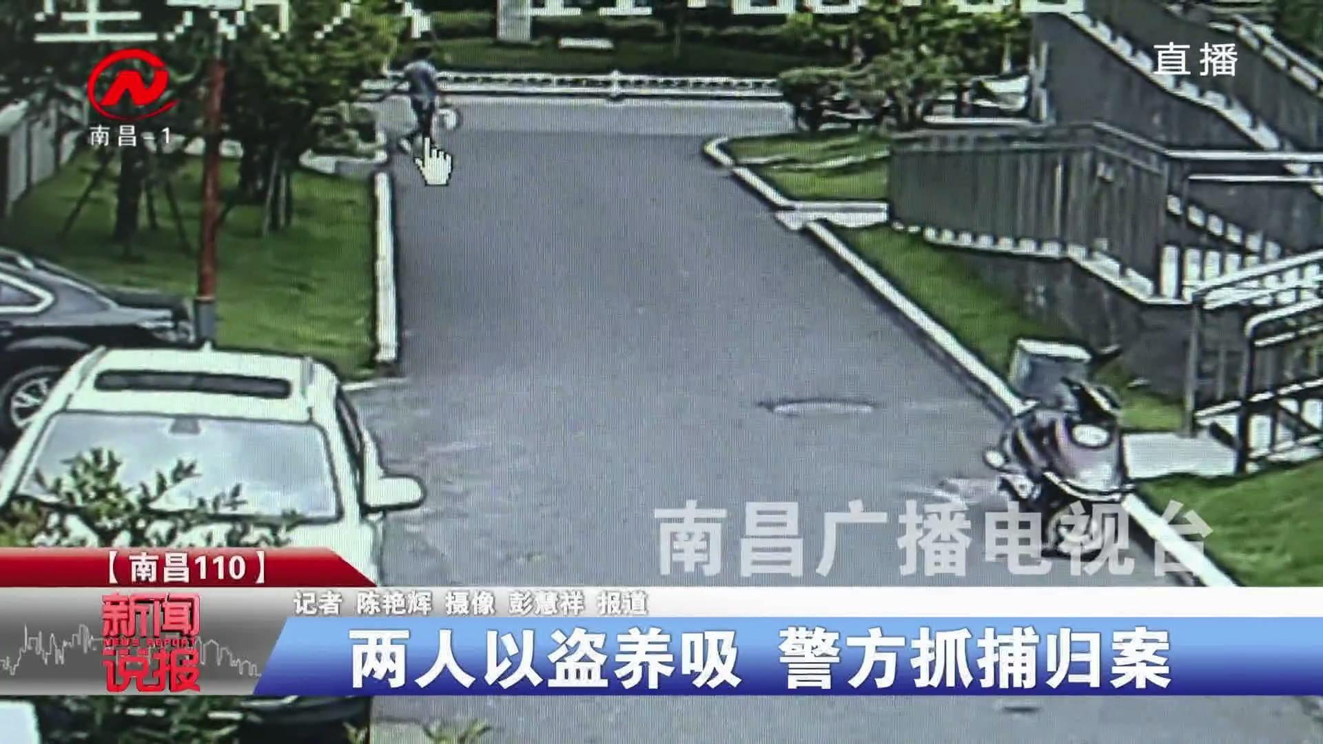 两人以盗养吸 警方抓捕归案