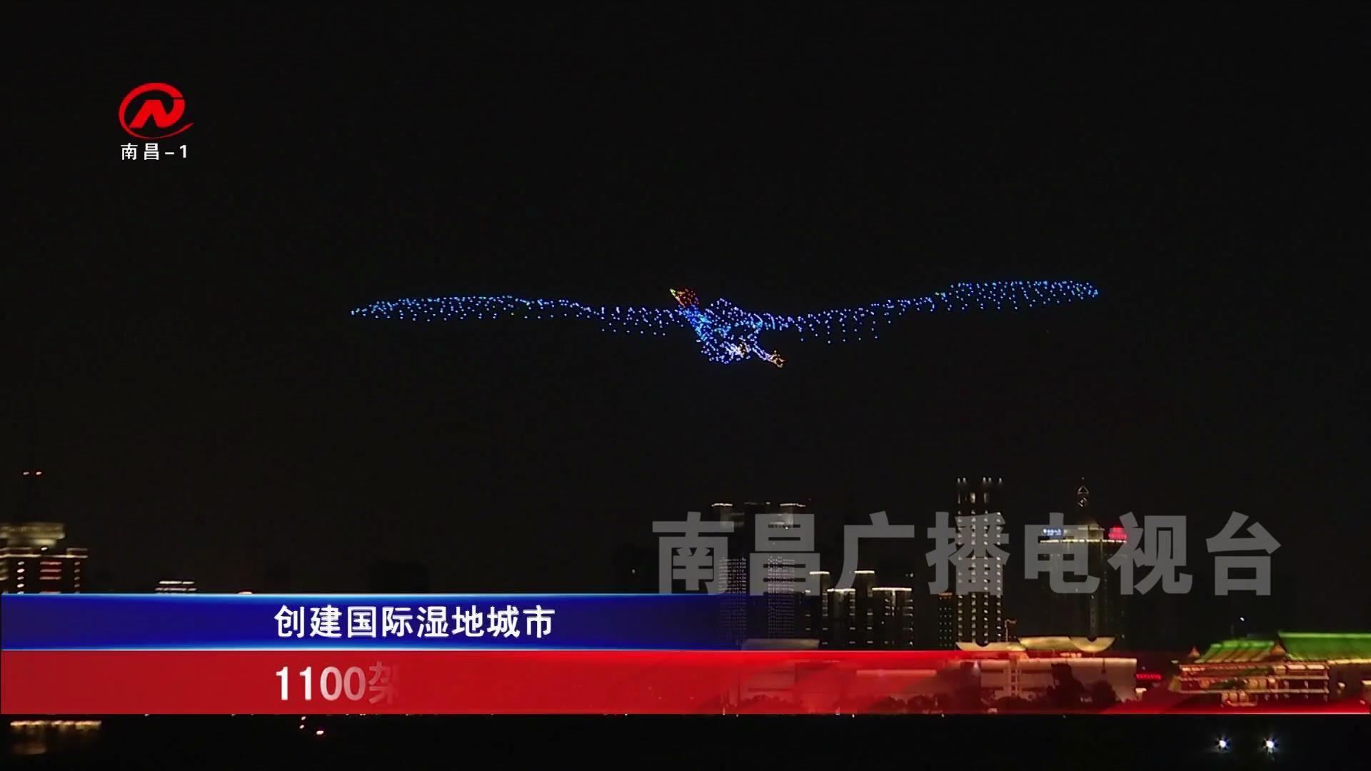 1100架無人機繪出候鳥最美瞬間