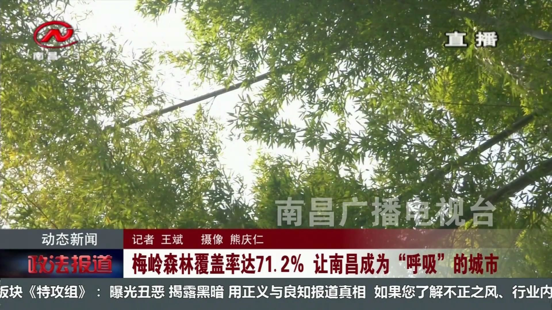 """梅岭森林覆盖率达71.2% 让南昌常成为""""呼吸""""的城市"""