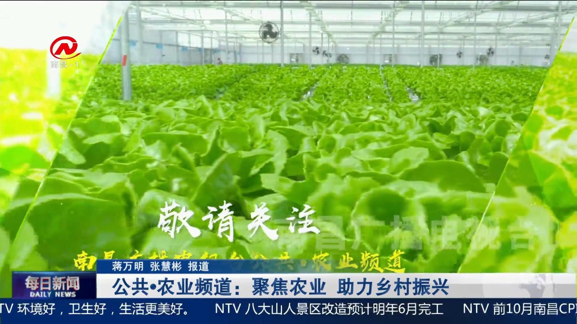 公共·农业频道:聚焦农业 助力乡村振兴