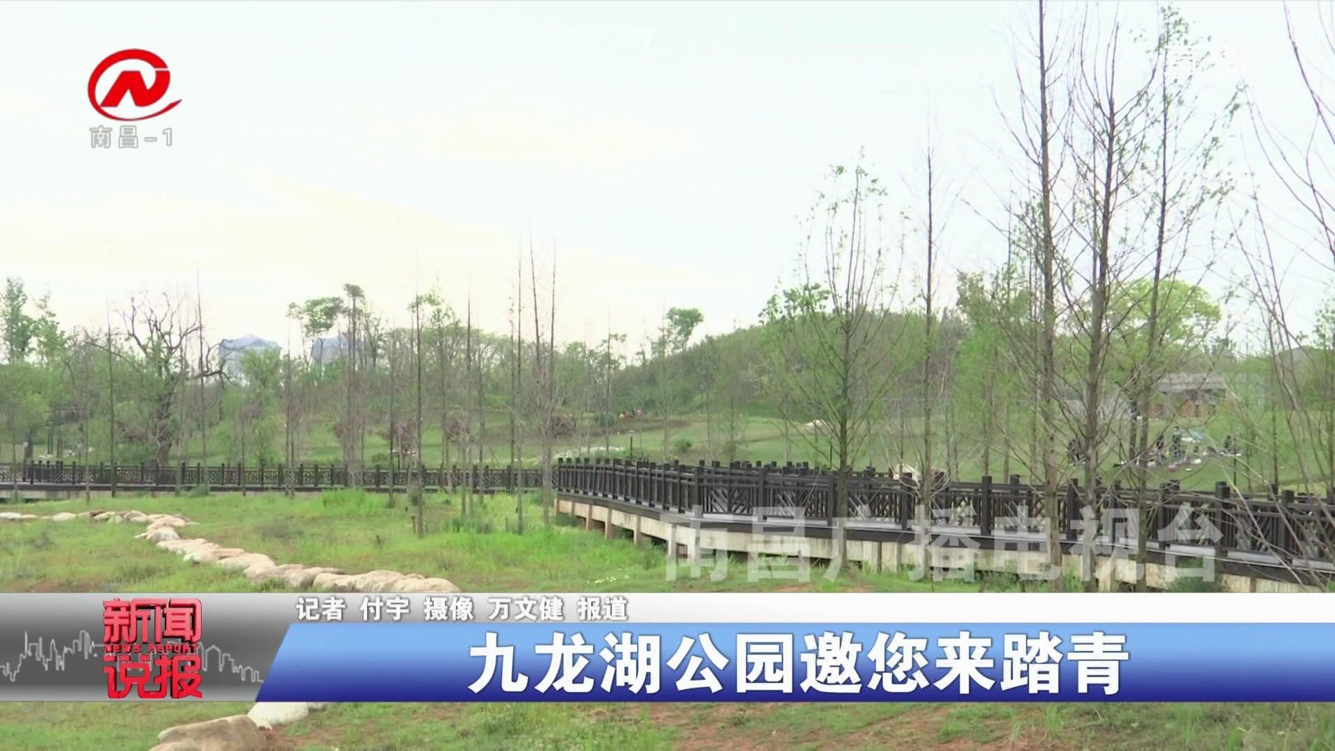 九龙湖公园邀您来踏青