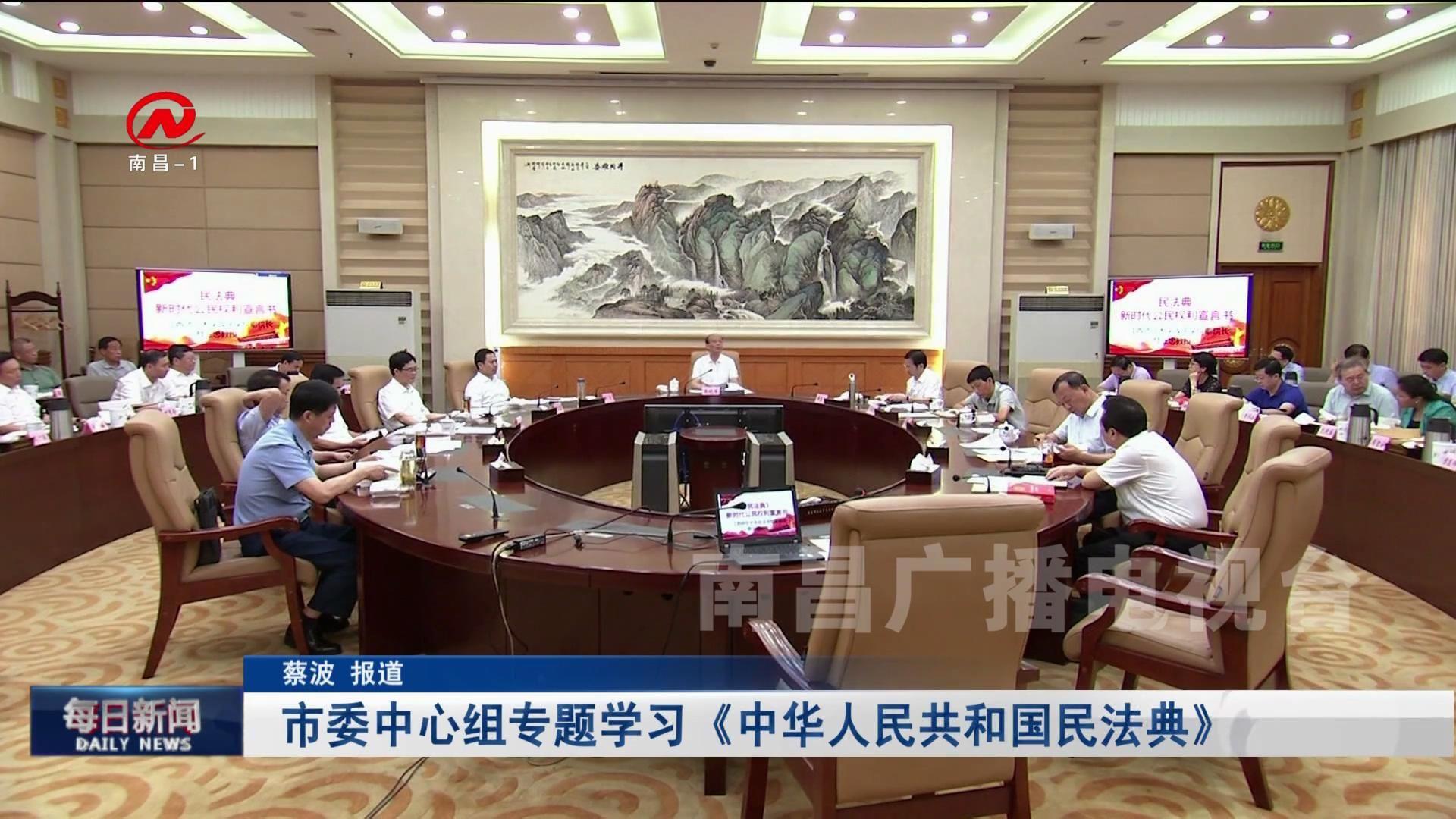市委中心组专题学习《中华人民共和国民法典》