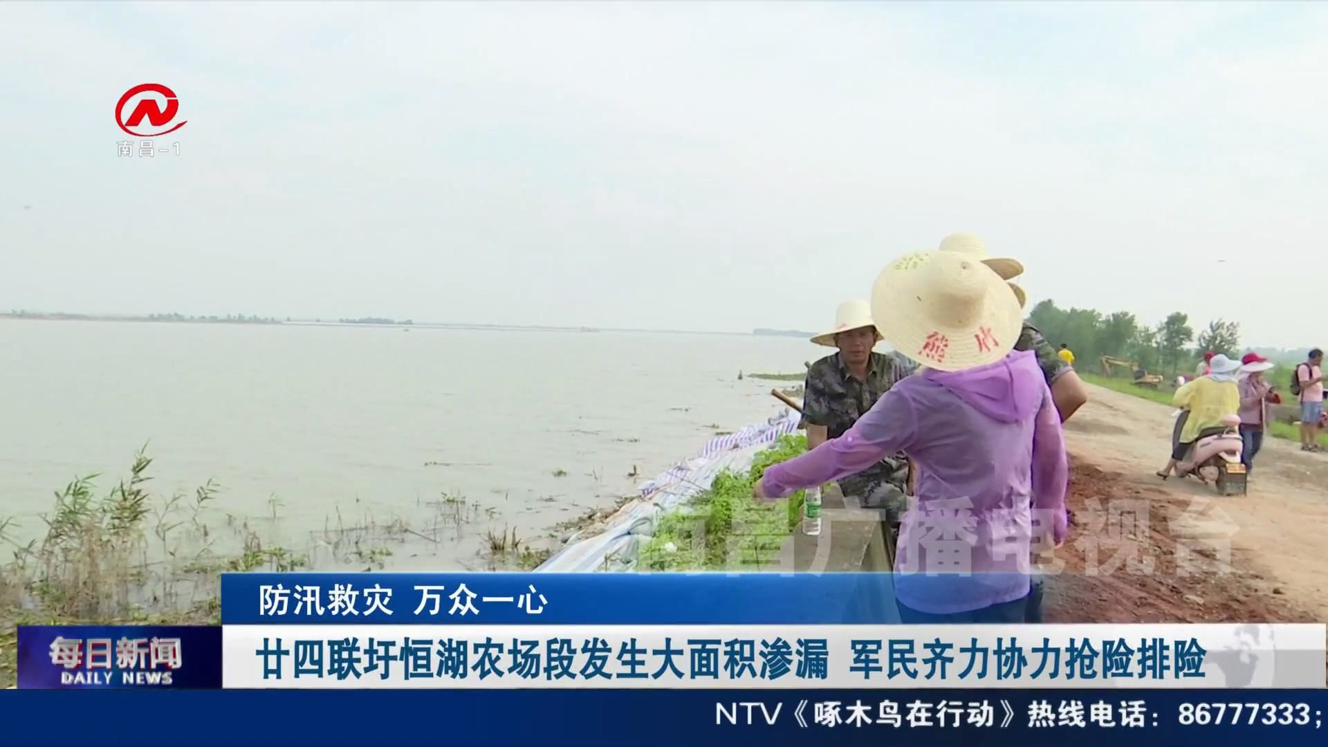 廿四聯圩恒湖農場段發生大面積滲漏 軍民齊力協力搶險排險