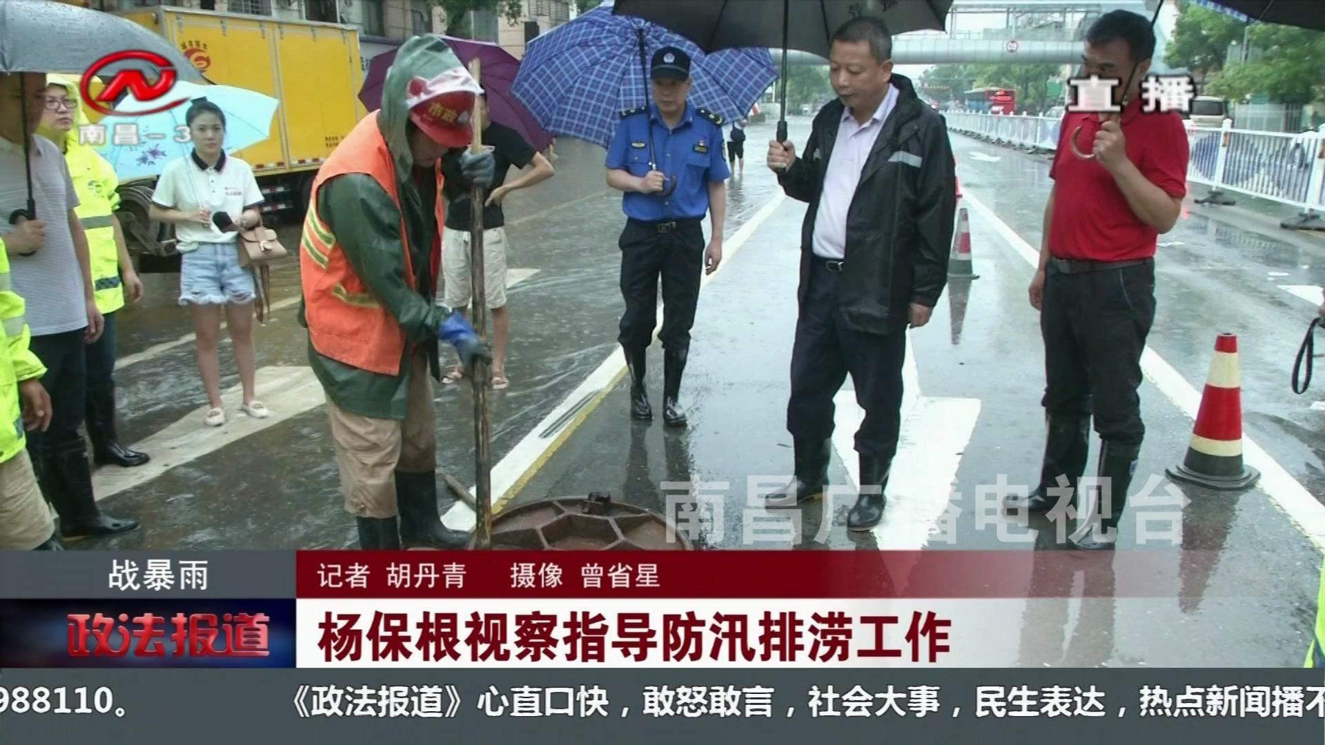 杨保根视察指导防汛排涝工作