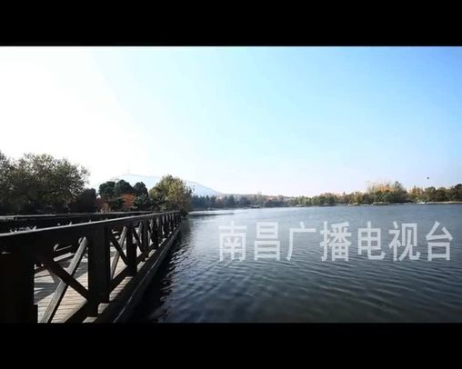 """""""栩栩如生""""跳水鱸魚"""