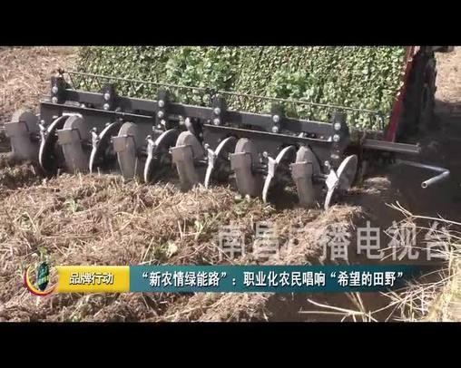 新農情綠能路:職業化農民唱響 希望的田野