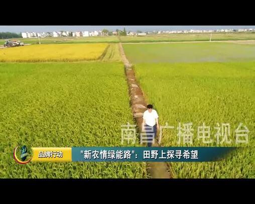 新農情綠能路:田野上探尋希望