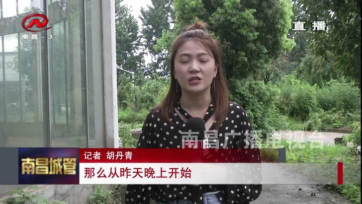南昌城管 2019-07-04