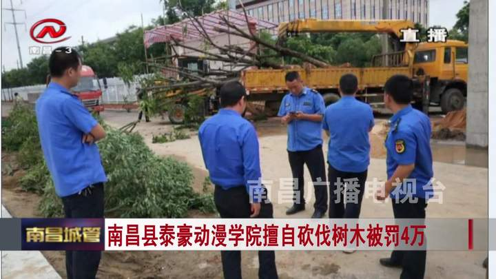 南昌縣泰豪動漫學院擅自砍伐樹木被罰4萬