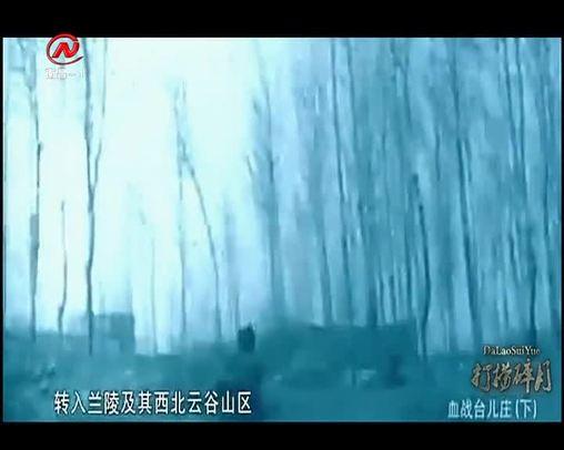 血战台儿庄(下)