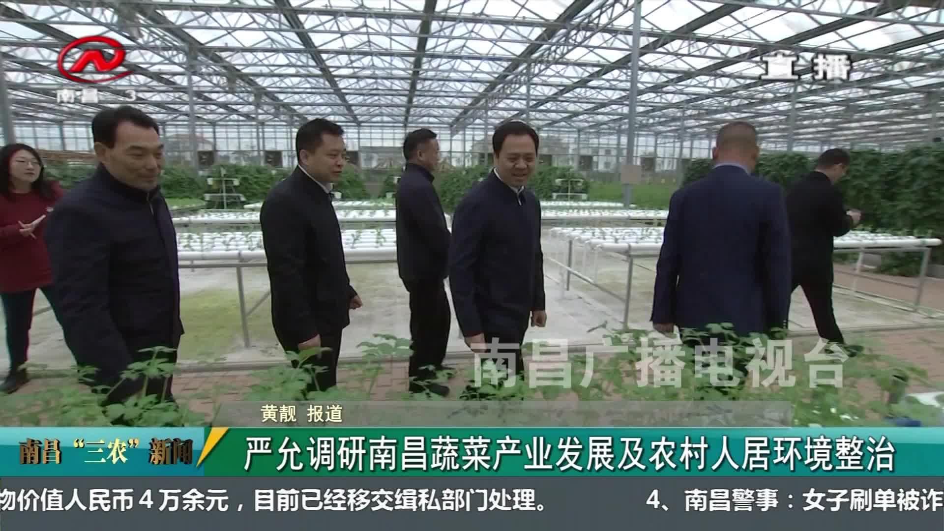 """【南昌""""三农""""新闻】严允调研南昌蔬菜产业发展及农村人居环境整治"""