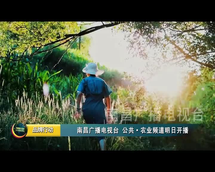 南昌广播电视台 公共·农业频道明日开播