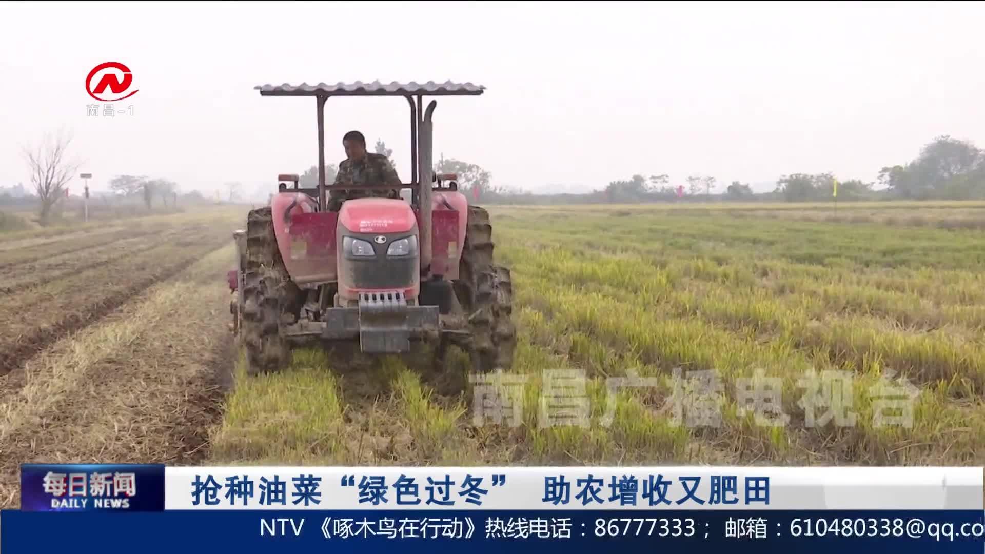 """抢种油菜""""绿色过冬"""" 助农增收又肥田"""