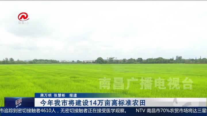 今年我市將建設14萬畝高標準農田