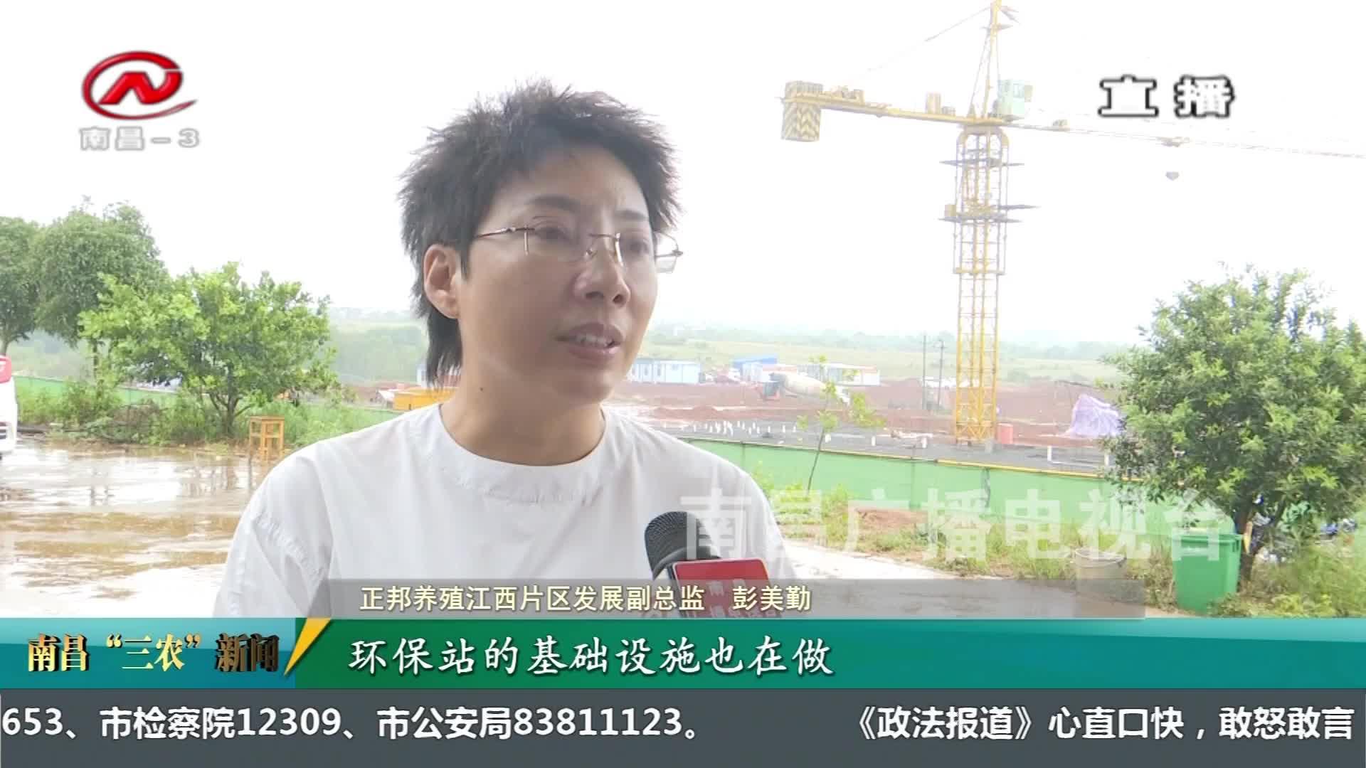 """【南昌""""三农""""新闻】大力开展规模猪场建设  推进生猪复产增养"""