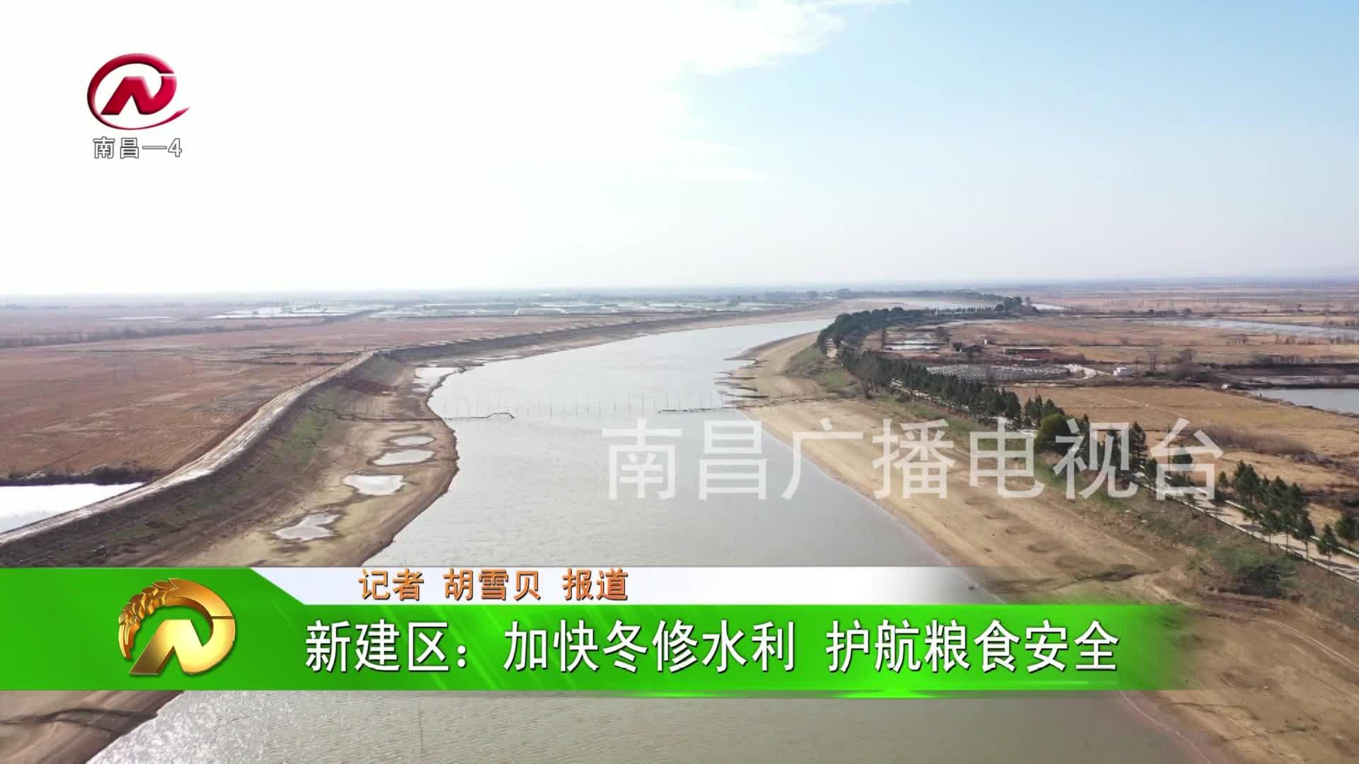 【豫章农视】新建区:加快冬修水利 护航粮食安全