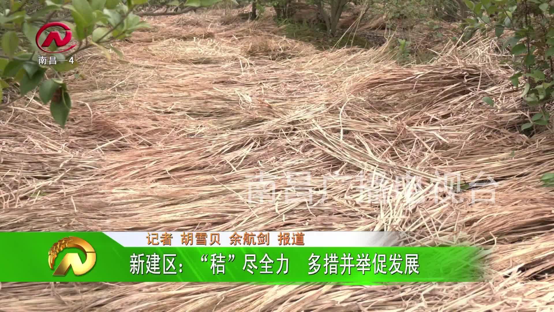 """【豫章农视】新建区:""""秸""""尽全力  多措并举促发展"""