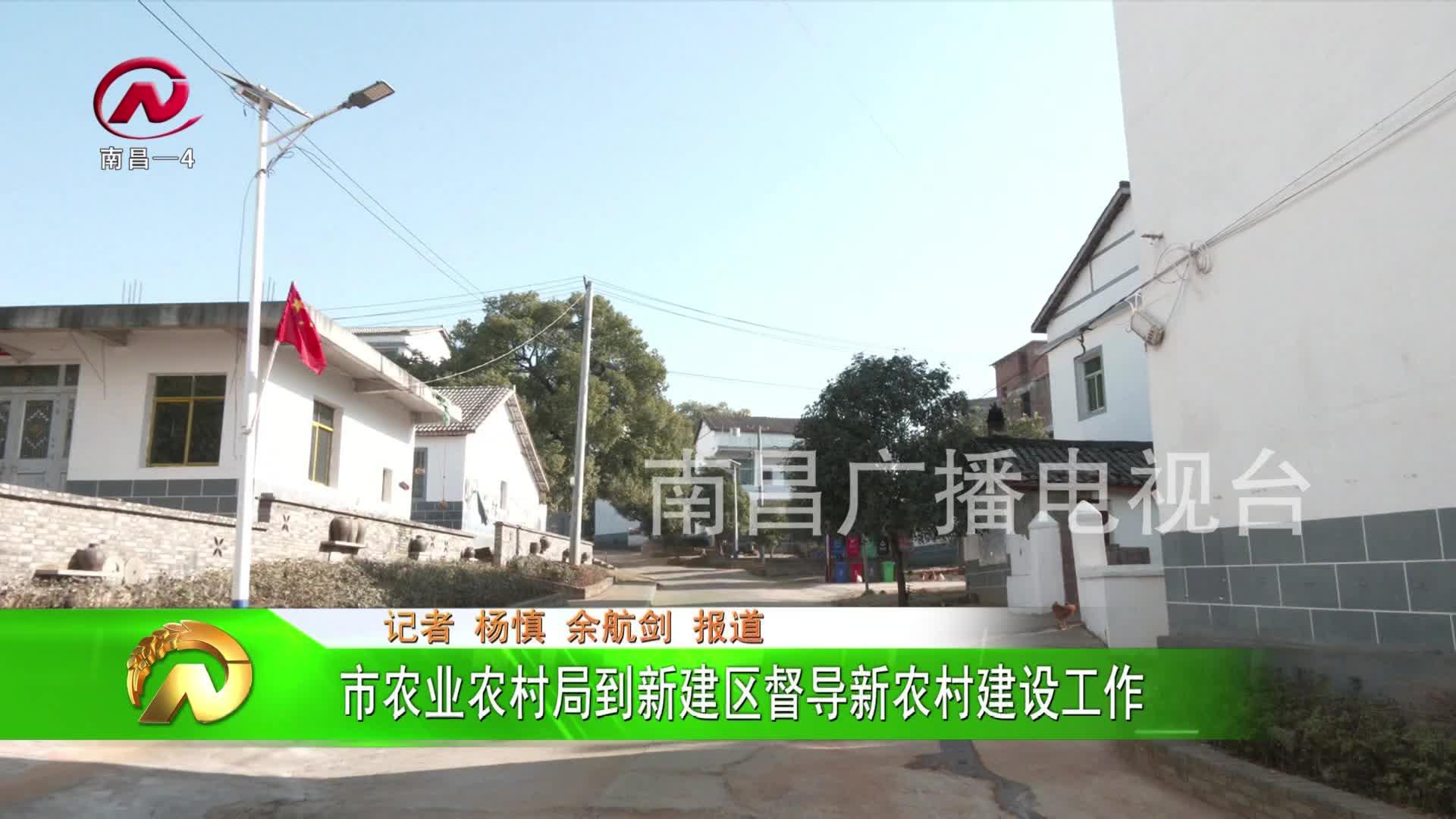 【豫章农视】市农业农村局到新建区督导新农村建设工作