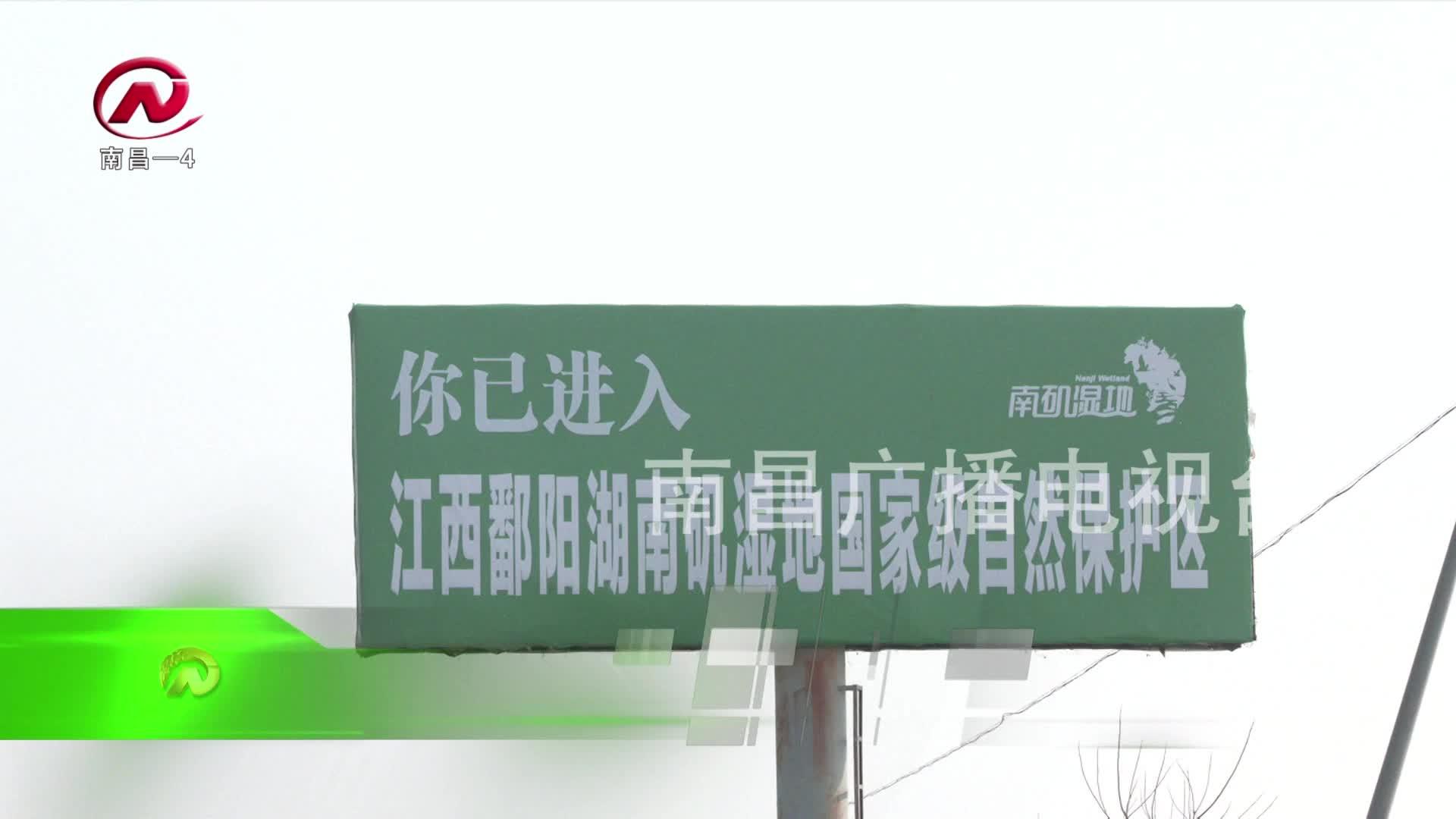 【豫章农视】全天候立体式巡护 保障候鸟安全越冬