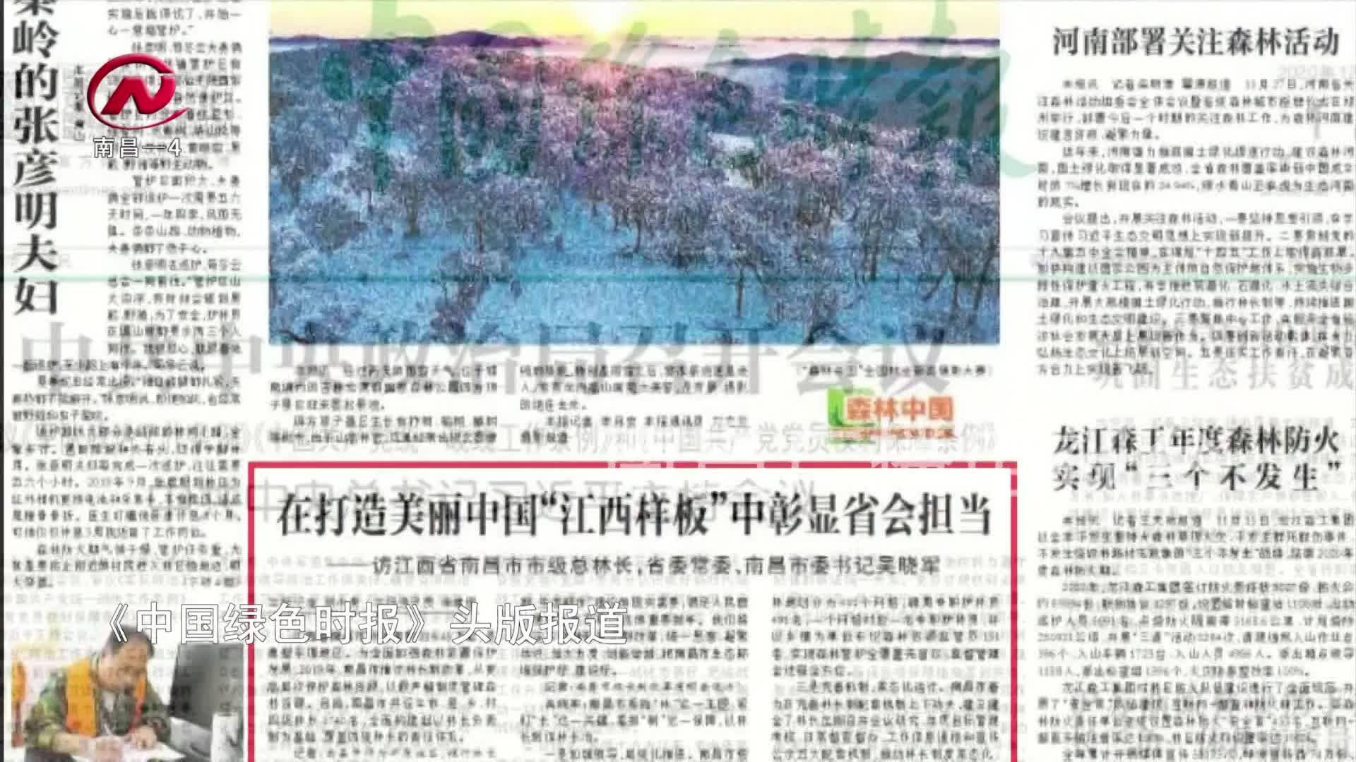 【豫章農視】楊馥寧:保護綠水青山 貢獻林業力量