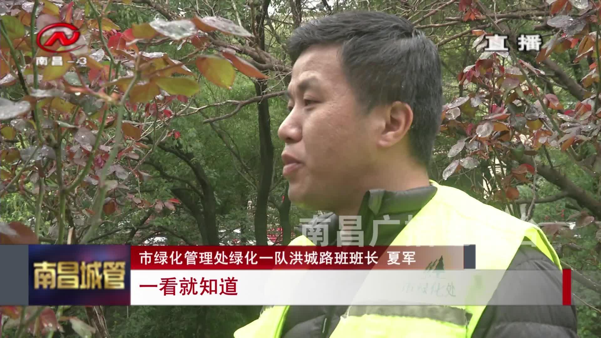 """【城管新聞】夏軍:我的生活充滿""""綠"""""""
