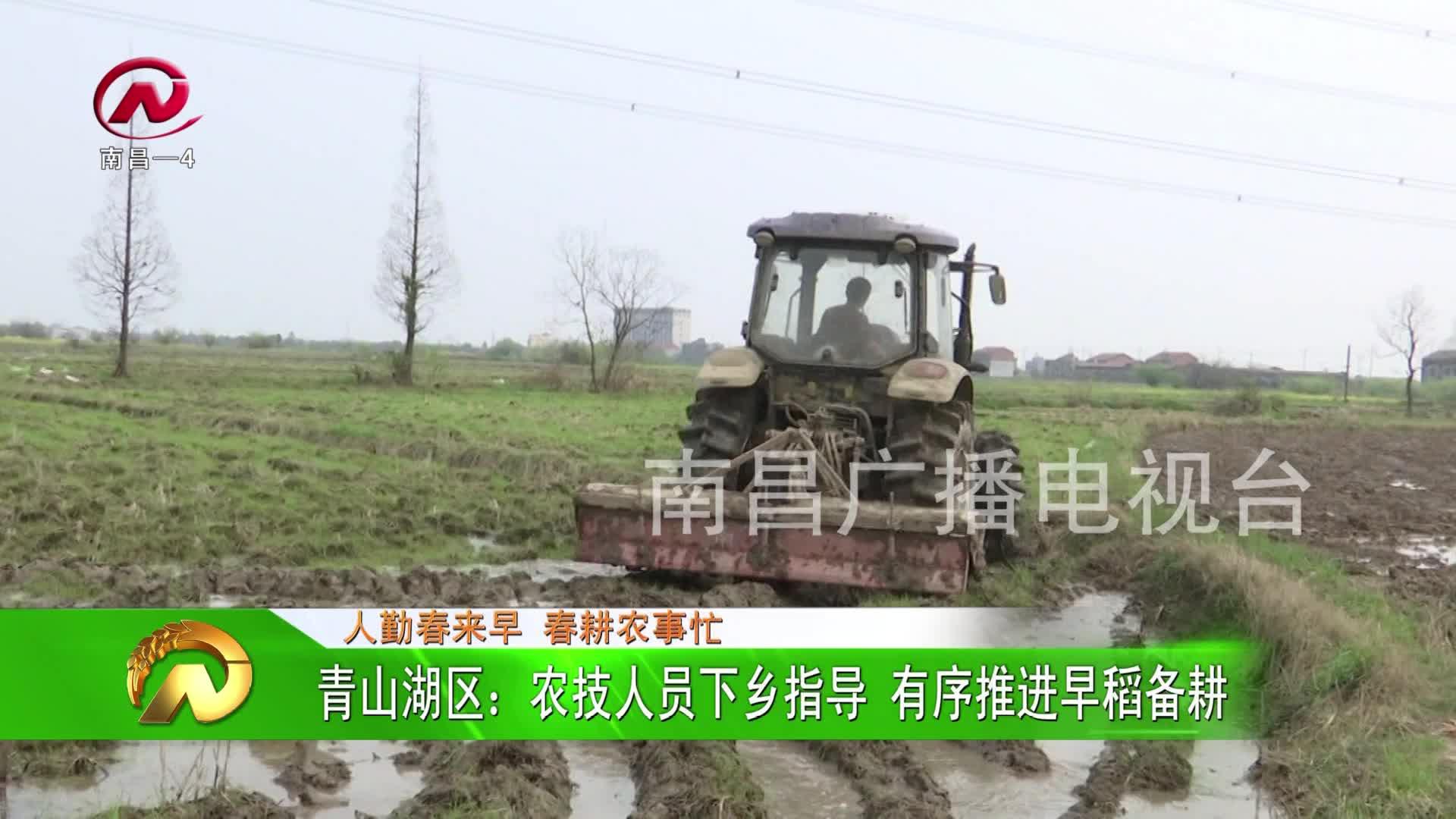 【豫章農視】青山湖區:農技人員下鄉指導 有序推進早稻備耕