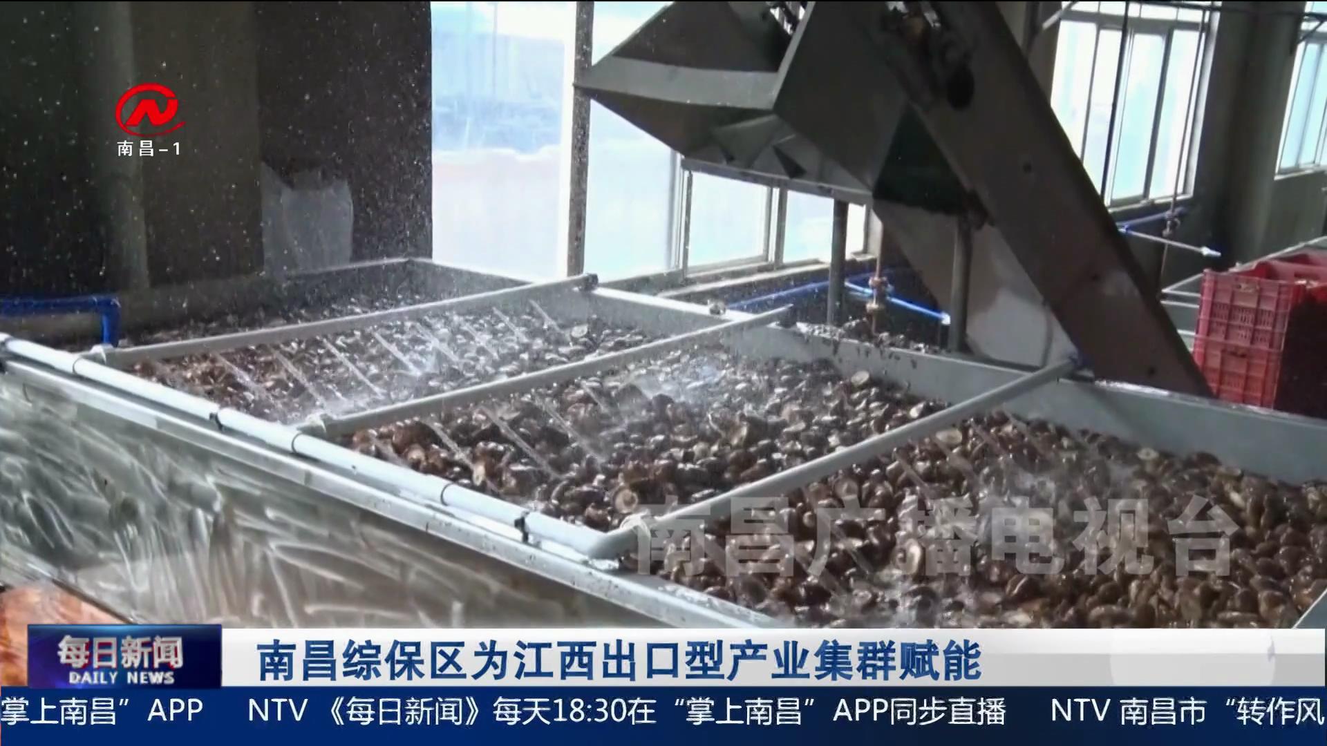南昌綜保區為江西出口型產業集群賦能