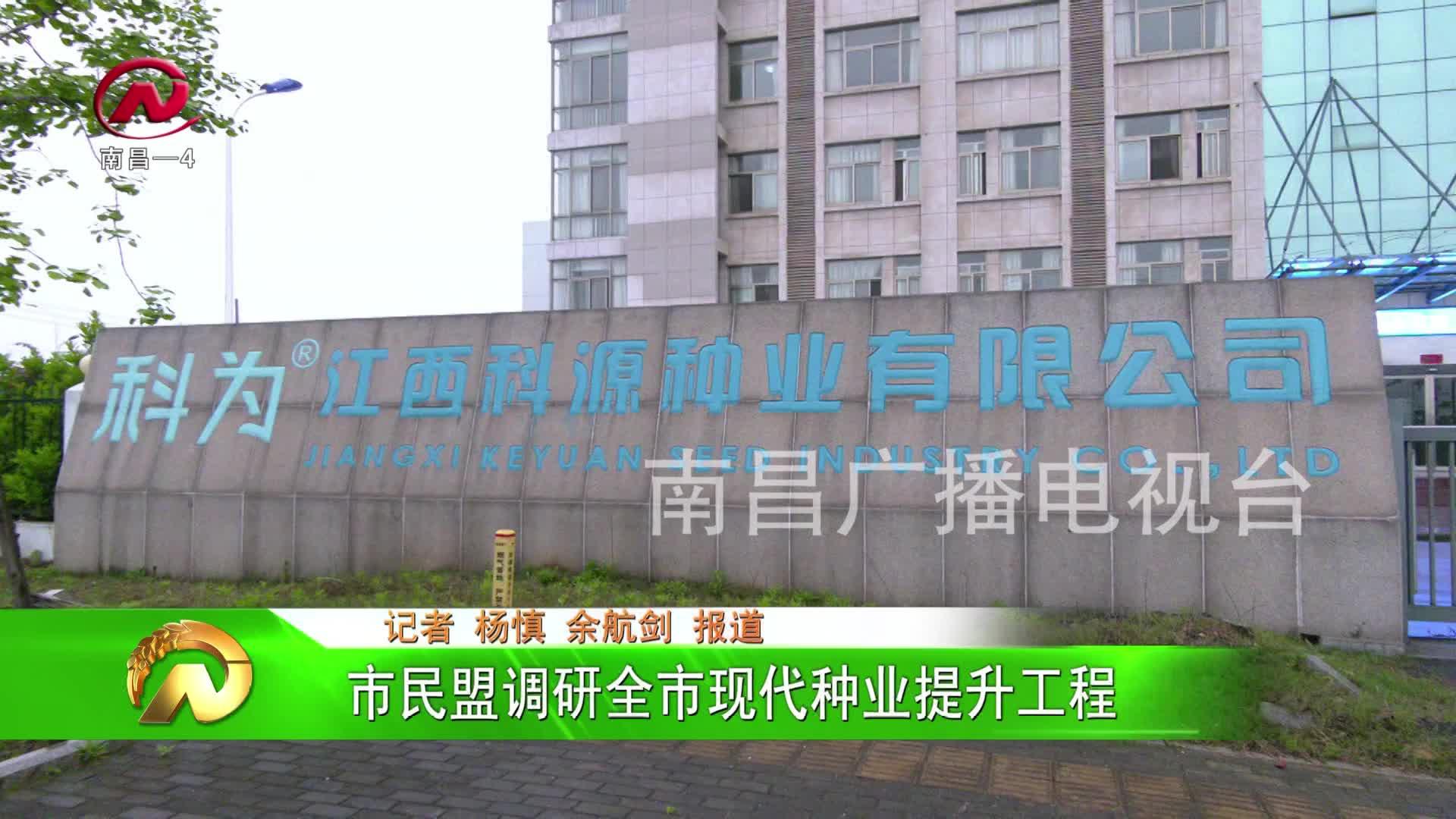 【豫章农视】市民盟调研全市现代种业提升工程