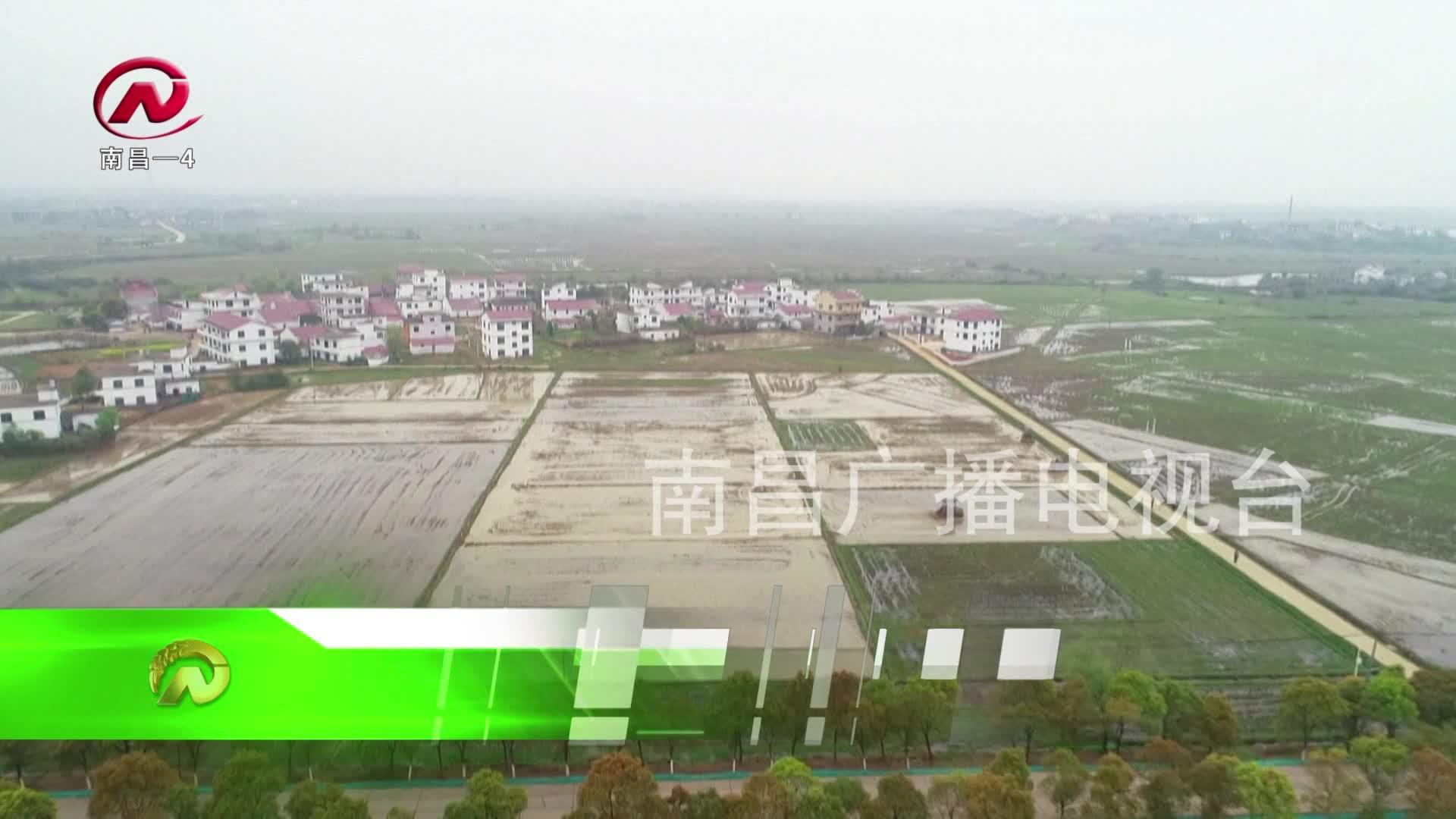 【豫章農視】新建區:春耕備耕 農機唱主角