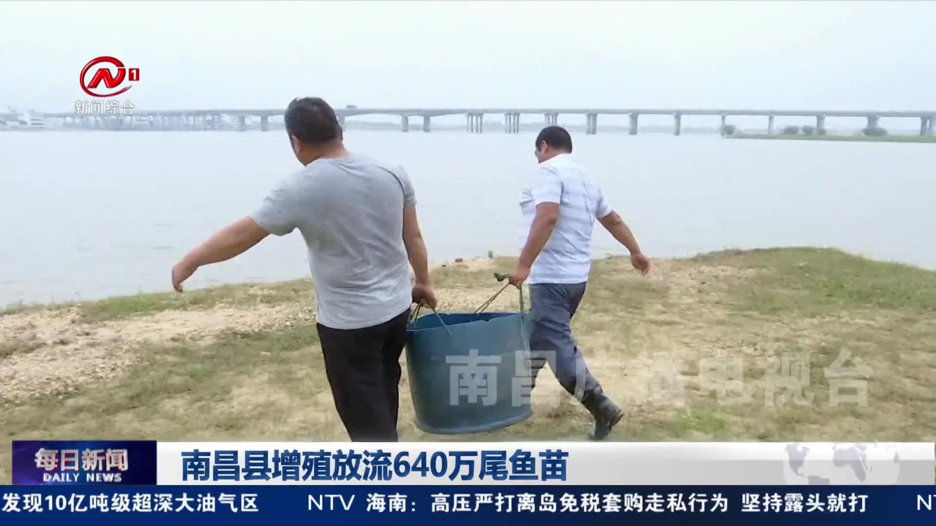 南昌县增殖放流640万尾鱼苗
