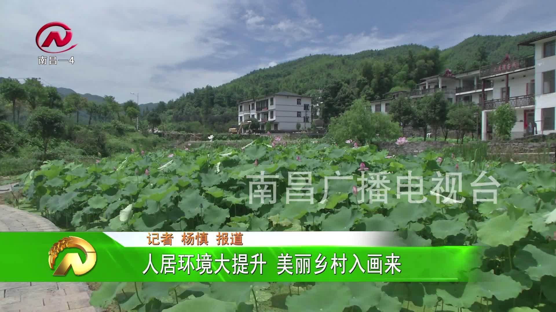 【豫章农视】人居环境大提升 美丽乡村入画来
