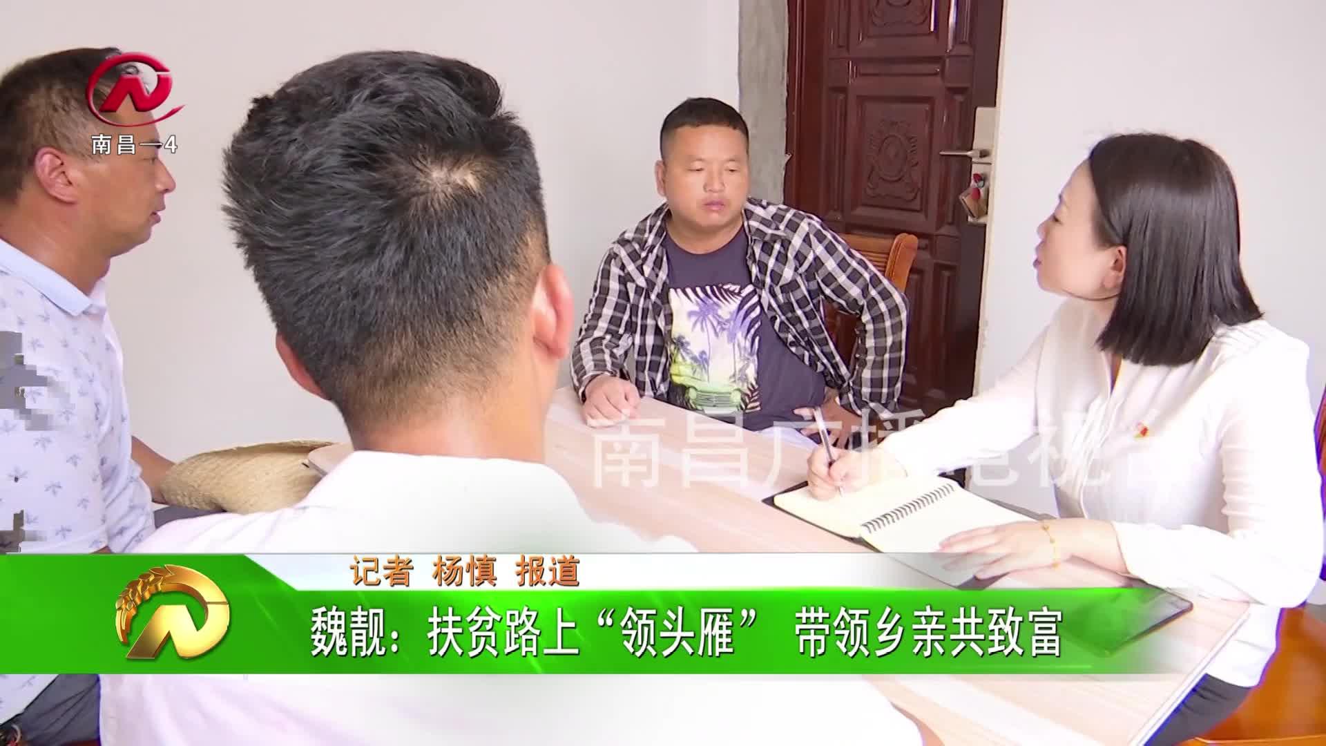 """【豫章农视】魏靓:扶贫路上""""领头雁"""" 带领乡亲共致富"""