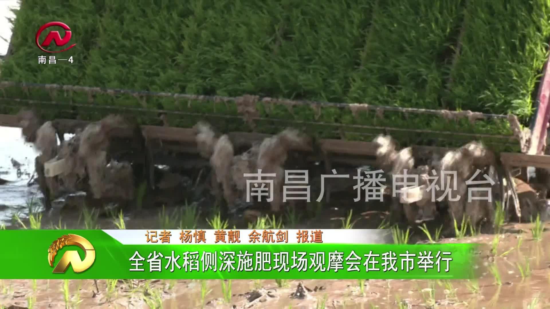 【豫章农视】全省水稻侧深施肥现场观摩会在我市举行