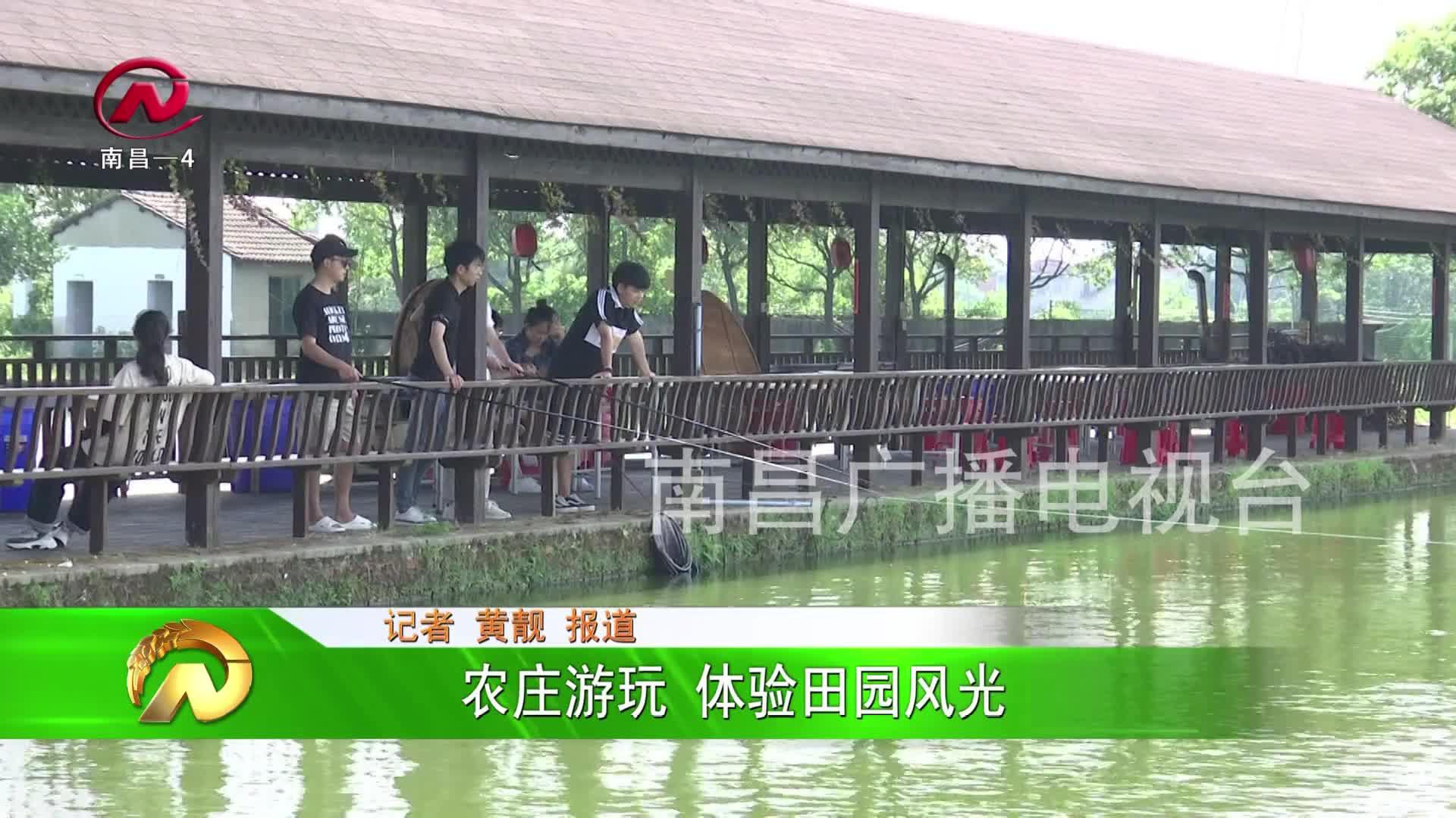 【豫章农视】农庄游玩 体验田园风光
