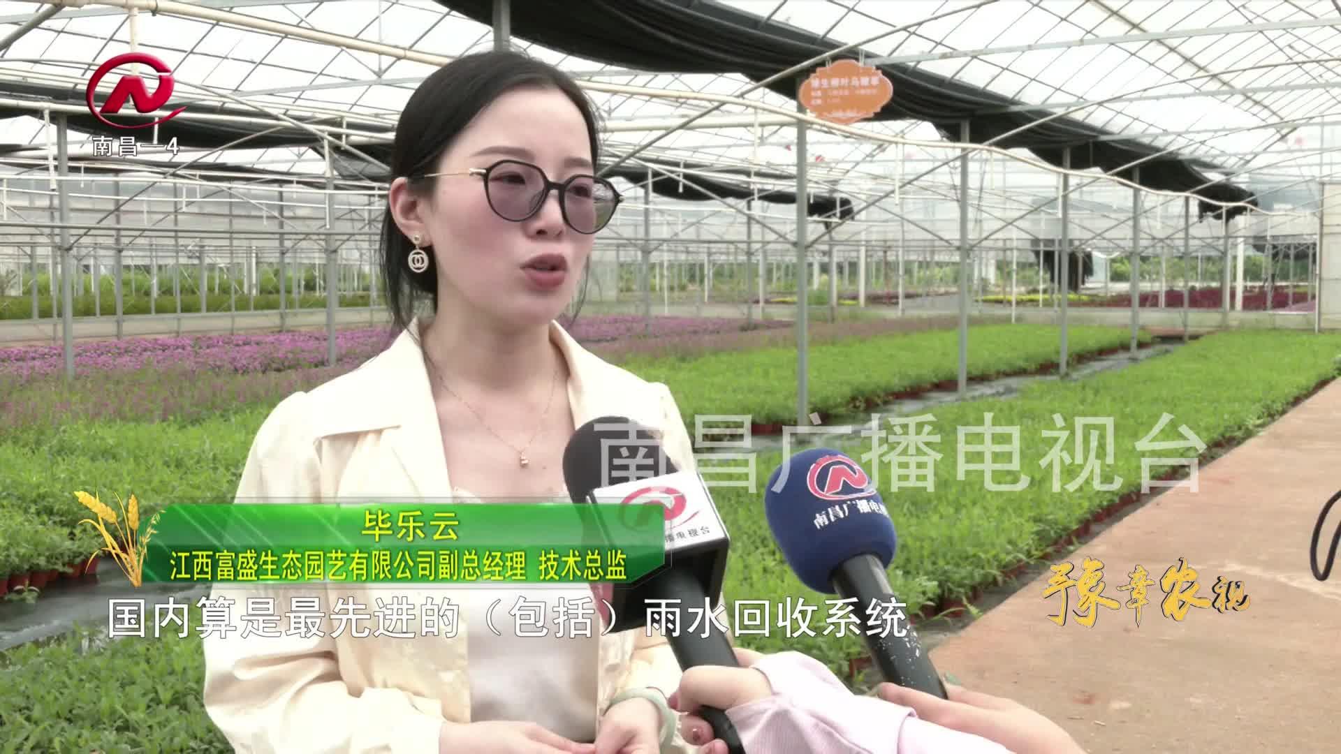 【豫章农视】四大特色产业高质量发展 助力乡村振兴
