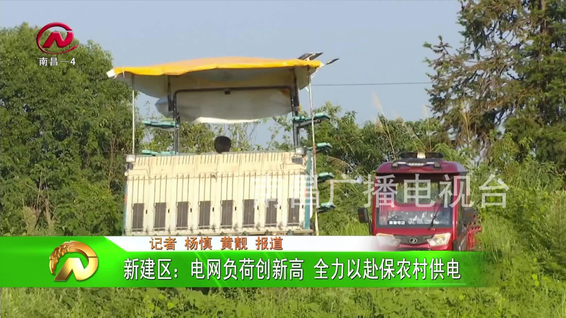 【豫章农视】新建区:电网负荷创新高 全力以赴保农村供电